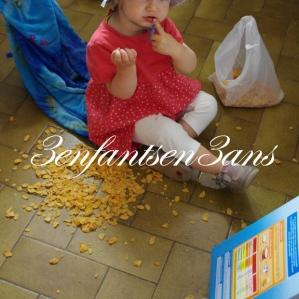 cereales-au-sol
