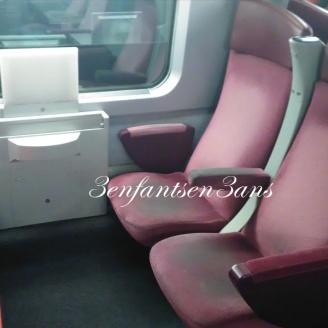 Train du retour : l'état des siège est comment dire... inquiétant ?
