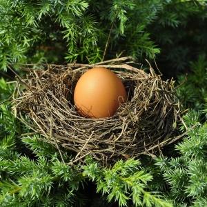 3ee3a egg-1600890_1280
