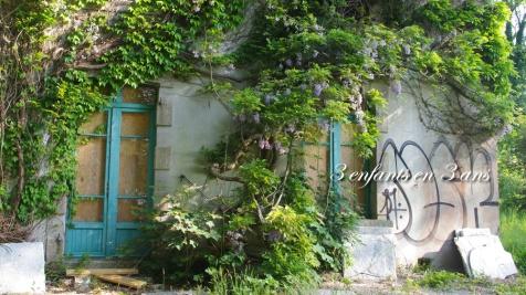La façade couverte de glycine