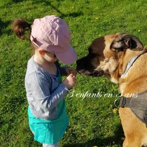 3 enfants en 3 ans ma vie sans télé chien
