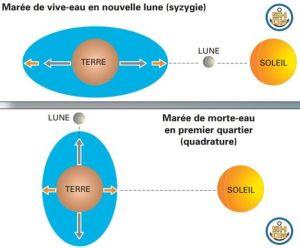 4598554_6_38bc_l-alignement-de-la-terre-de-la-lune-et-du_0fce1ee1837a0cd6813d73861643a433.jpg